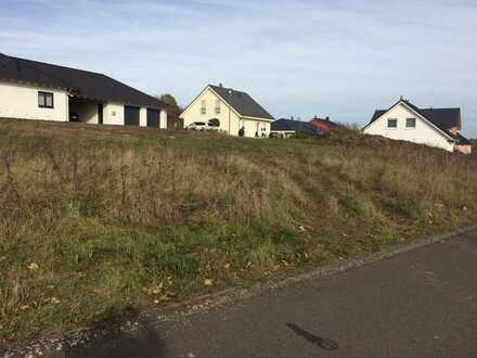 Noch ein Bauplatz frei! direkt bei Birkenfeld in ruhiger Lage