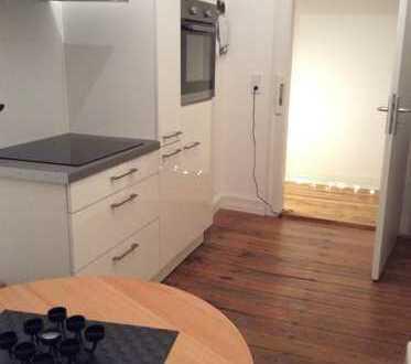 Stylische Studiowohnung mit großem Wohn-Kochbereich in renoviertem Altbau!