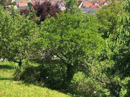 Sonniges Haus mit malerischer Aussicht umgeben von grün