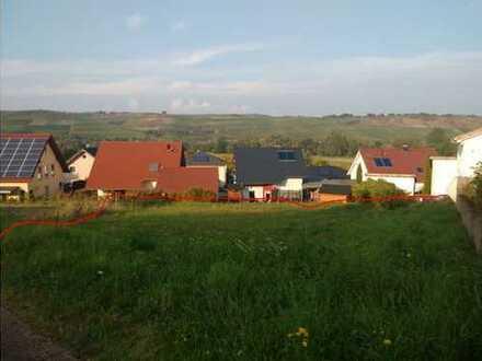Sehr schön gelegenes Baugrundstück in Merxheim zu verkaufen