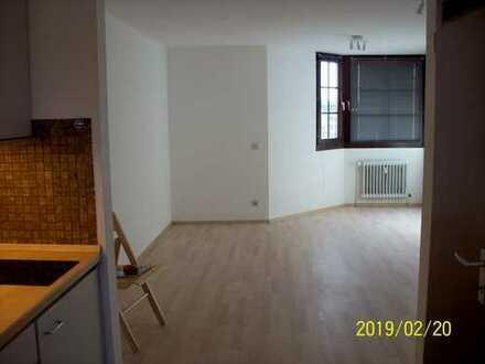 modernisierte ca.1,5-Zimmer-Apartment Heidelberg-City