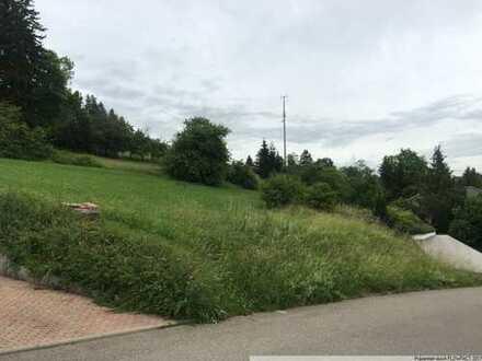 Grundstück mit Ausblick in ruhiger Wohnlage - inklusive Doppelgarage