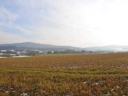 Landwirtschaftliche Nutzfläche oder Ausgleichsfläche