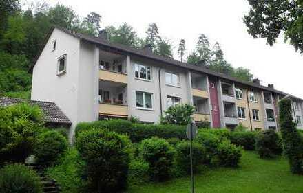 Gemütliche 3-Zimmer Wohnung direkt am Neckar
