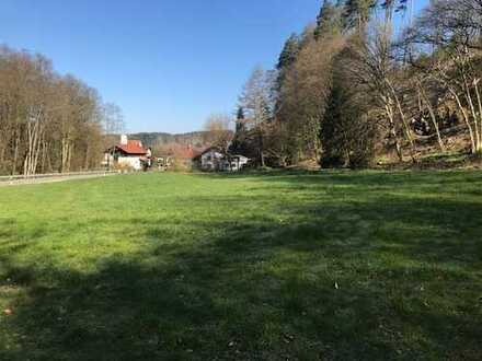 Landwirtschaftliches Anwesen mit 2 Häusern und 9900 m² Grundstück