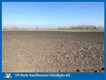 GELD VERGEHT - HEKTAR BESTEHT!!! Ackerfläche in Reisensburg