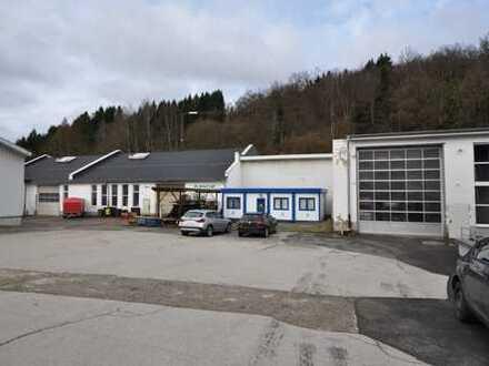 Zwangsversteigerung! Produktionshallen und Lagerhallen