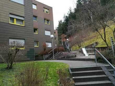 Schöne 3 ZKB Wohnung Karl-Greiner-Str. 65 in Calw 182.04