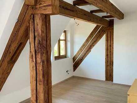 Individuelle 3-Zi-Wohnung mit hochwertiger EBK und kleinem Balkon im Zentrum von Sachsenheim