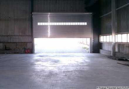Lenting, ca. 3.000 m² beheizbare Lager- und Produktionsflächen zu vermieten