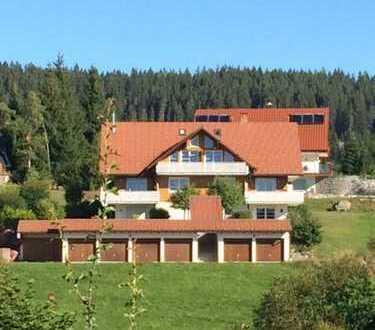 Seeblick inclusive - Gepflegte 3-Zimmer-Wohnung mit Balkon und Einbauküche in Schluchsee