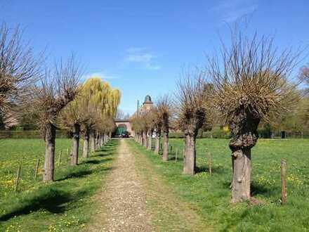 Erstbezug: Denkmalgeschützter Gutshof in unmittelbarer Rheinnähe