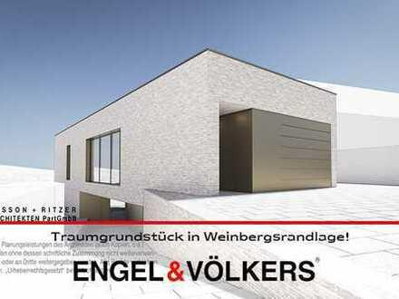 Traumgrundstück in Weinbergsrandlage mit Architektenentwurf!