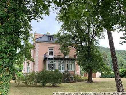 Sehr schöne Villenwohnung - große Wohnküche - große Terrasse ...
