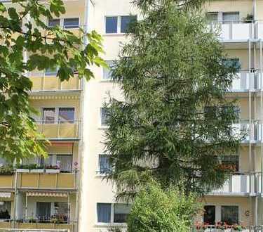 Familienfreundliche Wohnung - Blick über Leipzig und das Naturbad Thekla.