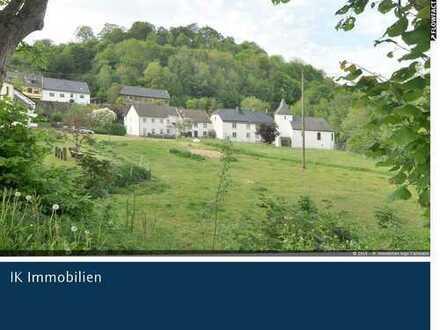 renovierungsbedürftiges Bauernhaus nahe des Kronenburger Sees !