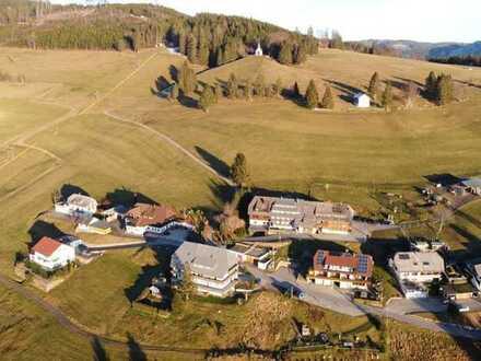 Schwarzwald pur! Möblierte Ferienwohnung mit Westbalkon in Todtnauberg