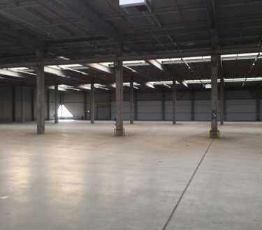 Große und tagesbelichtete Hallenfläche nahe des BER | Rampen | Außenfläche