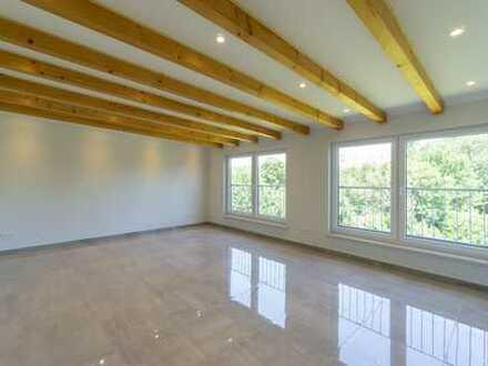 Brand new apartment in Wallau