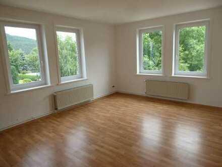 Renovierte 3-Raum-Wohnung mit Einbauküche