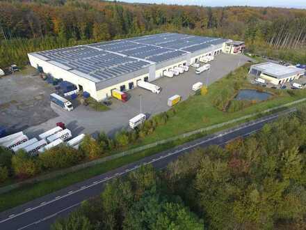 Im Alleinauftrag: ca. 10.000 qm Logistikflächen flexible Laufzeiten möglich!