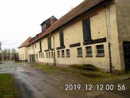 Bobenheim-Roxheim 860 m² Lagerfläche zu vermieten