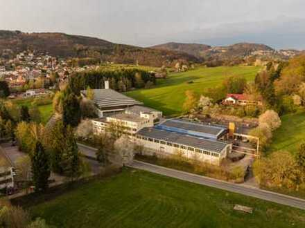 Halle, Werkstatt, Produktion, Lagerraum 206 qm²