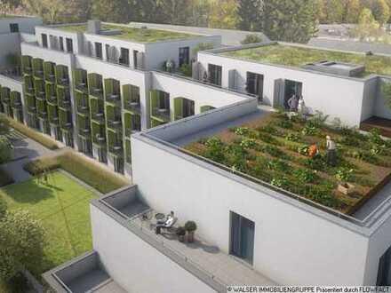 XXL Dachterrassen-Apartment für Studenten. Herrliche Süd-West-Ausrichtung mit Blick in den Innenhof