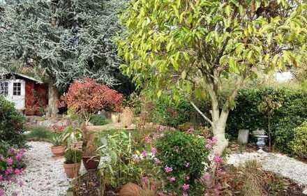 Gepflegte 3-Zimmer-Wohnung mit Terrasse und Garten in Hagen Hochschulviertel