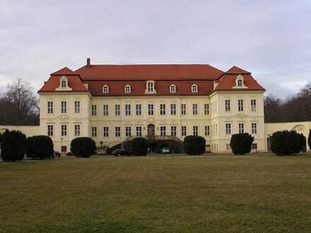 Großzügige Büro/Praxisräume im Schloss