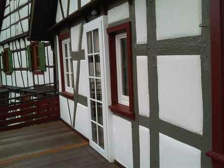 Vollständig renovierte 3-Zimmer-Wohnung mit Balkon und EBK in Schiltach