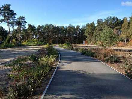 Exklusives Grundstück in Bergholz-Rehbrücke-seltene Gelegenheit-nicht verpasen!!