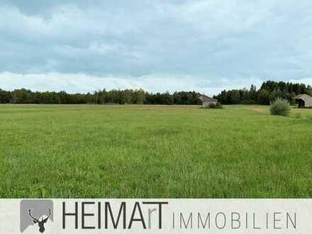 HEIMArT # Wald- und Wiesengrundstück in Wielenbach gegen Gebot