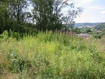 Wohnen im Grünen: Ruhiges Baugrundstück am Hang in Alt-Arnsberg