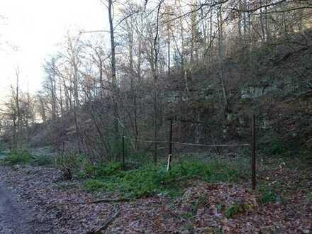 Steinbruch mit angrenzender Wiesenfläche unmittelbar am Neckar gelegen