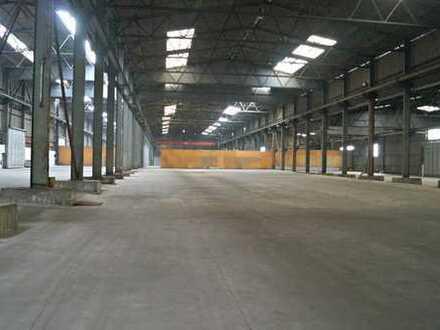 Einfache Lagerhalle (ca. 500 m²) im Hafengebiet von  56626 Andernach
