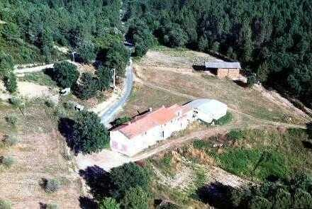 Rustico + 2 Apartments bei Grosseto, ca. 72 ha Land, mit Wein, Oliven und Korkeichenwald