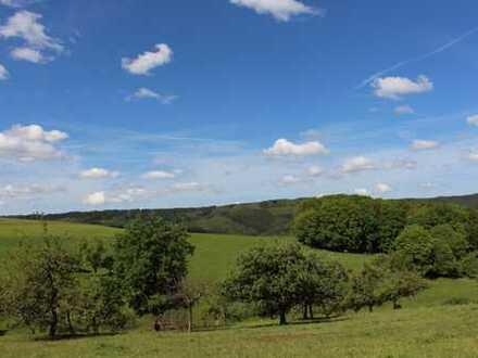 Rothenberg: Baugrundstück im Grünen