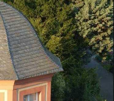 Tolles Ambiente in 2 Zimmerwohnung mit Blick in`s Grüne und der Nähe zum Rhein/Hersel