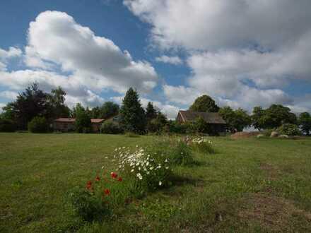 1-2 Familienhaus/Doppelhaus (7 Zimmer), Scheune und ca. 2 ha im Grünen (Resthof)