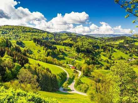 Profitables Traditionshotel im Südschwarzwald