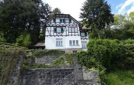 Zentrumsnahes 2-Familienhaus in Alleinlage in Forbach