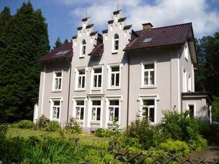 Einzigartiges Anwesen an der Stör – MFH & EFH , vielfältige Nutzungsmöglichkeiten (4 WE)