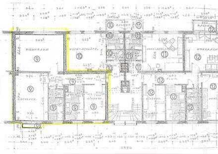 Ruhige schöne 3-Zimmer-Wohnung in Zentrumsnähe (Hainallee)