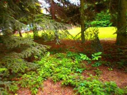 * Eigener Garten 250 m²- 300 m² mit 2 große Räumen in guter Griesheimer Lage….