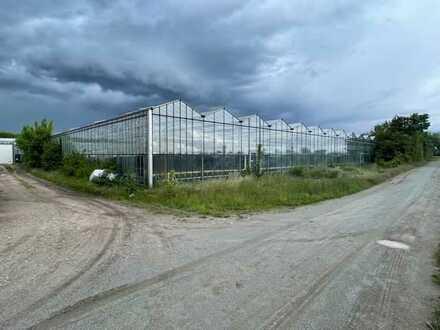 *XXL Grundstück mit Gärtnerei und Wohnhaus in Feldrandlage *