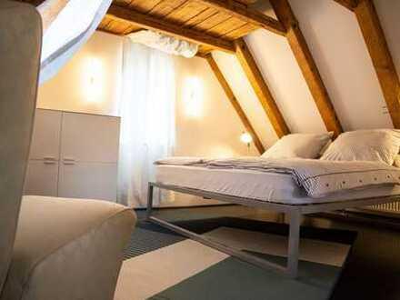 Stilvolle 1-Zimmer-Dachgeschosswohnung mit Balkon und Einbauküche in Marbach am Neckar