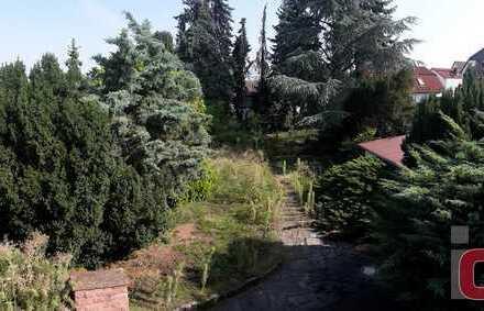 Bauherren aufgepasst - 819 m² großes Grundstück mit gepflegtem Altbestand in bester Lage