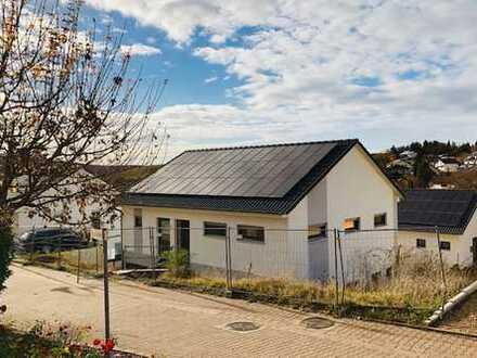 Neubau für Handwerker / Traumhafte stadnahe Weinberglage u. Fernblick / Auch als 2 FH geeignet