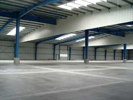 """""""BAUMÜLLER & CO."""" ca. 9.000 m² Hallenfläche - ebenerdige Andienung mit guter Anbindung"""